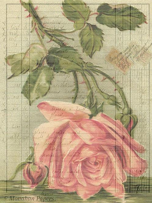 Botanical 49