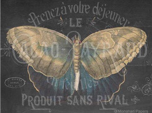 Chalkboard Butterfly