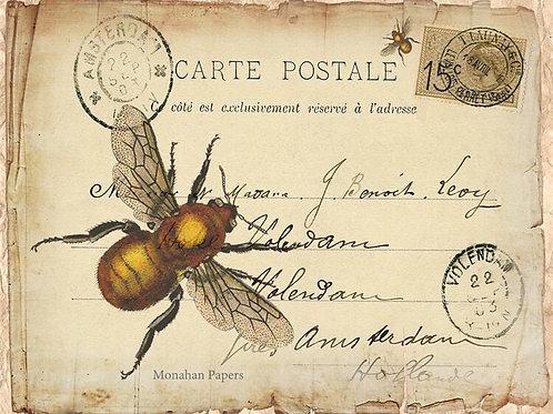 La Carte Bee