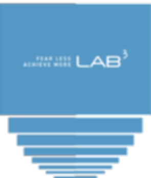 lab3fearless.png