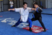 Yout, Teen and Adult Martial Arts class