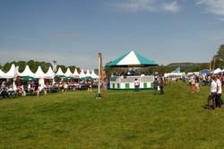 Chatsworth Horse Trials '14-07.jpg