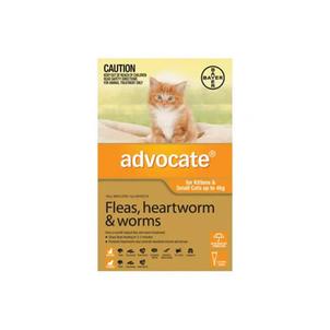 Advocate- Fleas, heartworms & worms