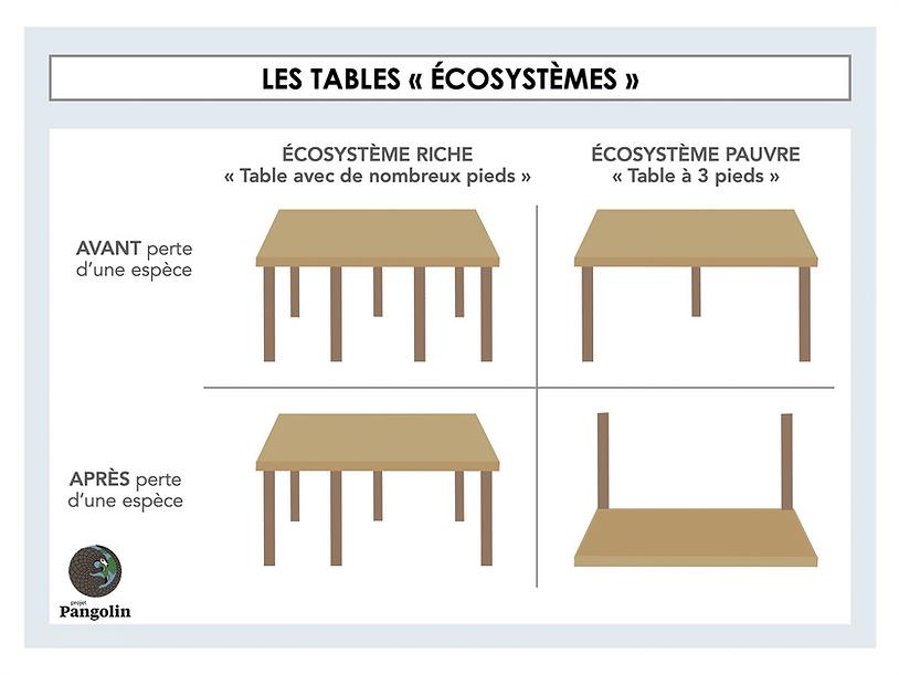 les-tables.png
