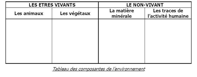 tableau environnement.jpg