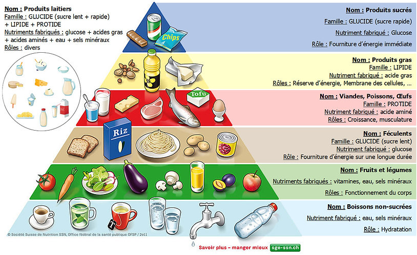 Pyramide alimentaire.jpg