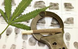 Contre la dépénalisation du cannabis
