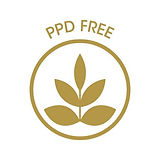 PPD_free_13_30_80_22.jpg