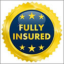 fully-insured-logo-500x500_edited.jpg