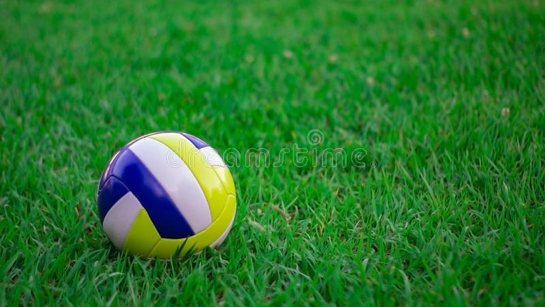 Volleyball in the Park