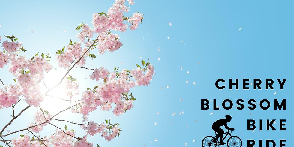 Cherry Blossom Bike Ride