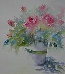 Miniature Rose.JPG