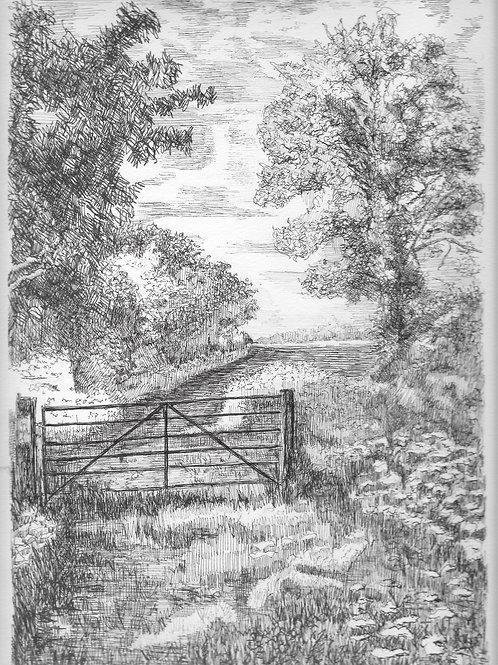 Gate at Wilstone Green
