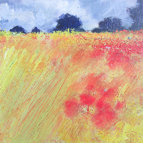 Storm Clouds, Poppy Meadow, Far Trees