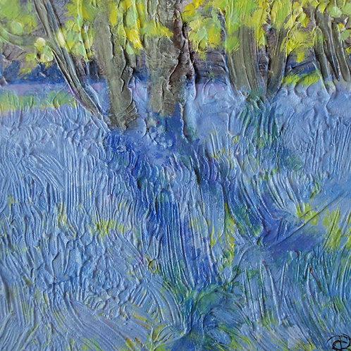 Shimmering Beech Leaves, Bright Bluebells