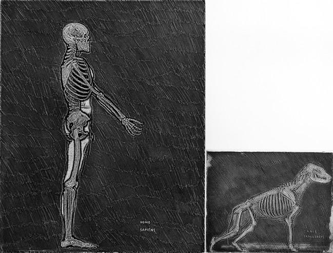 Homo sapiens y cannis familiaris  Medida de la placa: 49x65 cm  Medida total del papel: 61x80 cm  Técnica: Aguafuerte  Edición: 13 grabados numerados $22,040 MXN