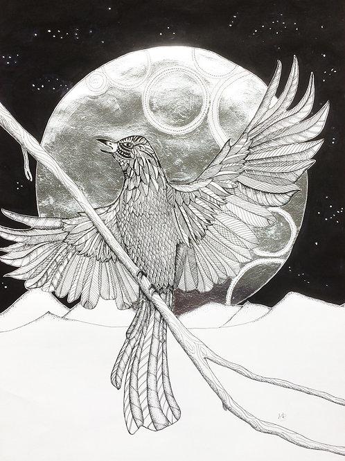 Blackbird Singing in the dead of Night