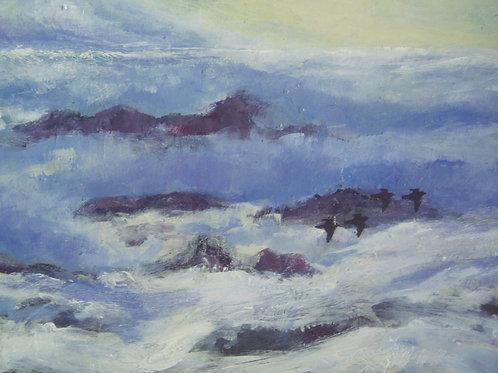 Sanderlings Over The Waves.