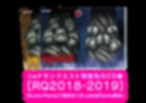 Webバナー[RQ2018-2019].png