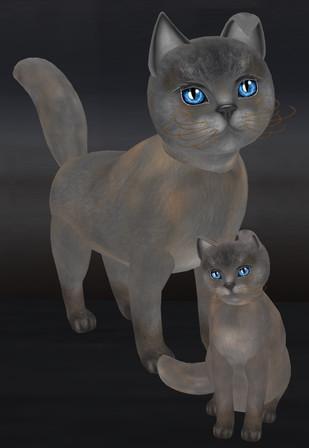 KittyProofs