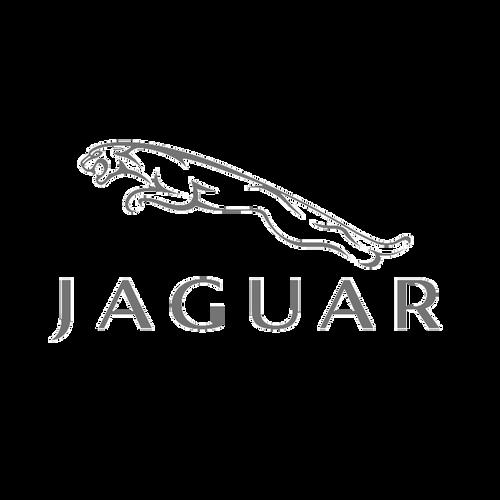 adhesivo-jaguar-logo.png
