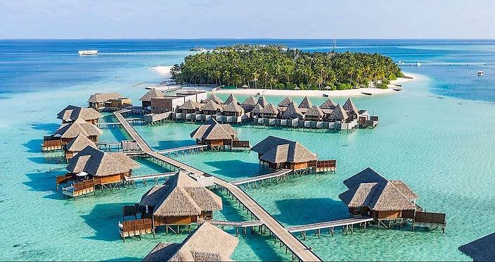 Maldivas mice