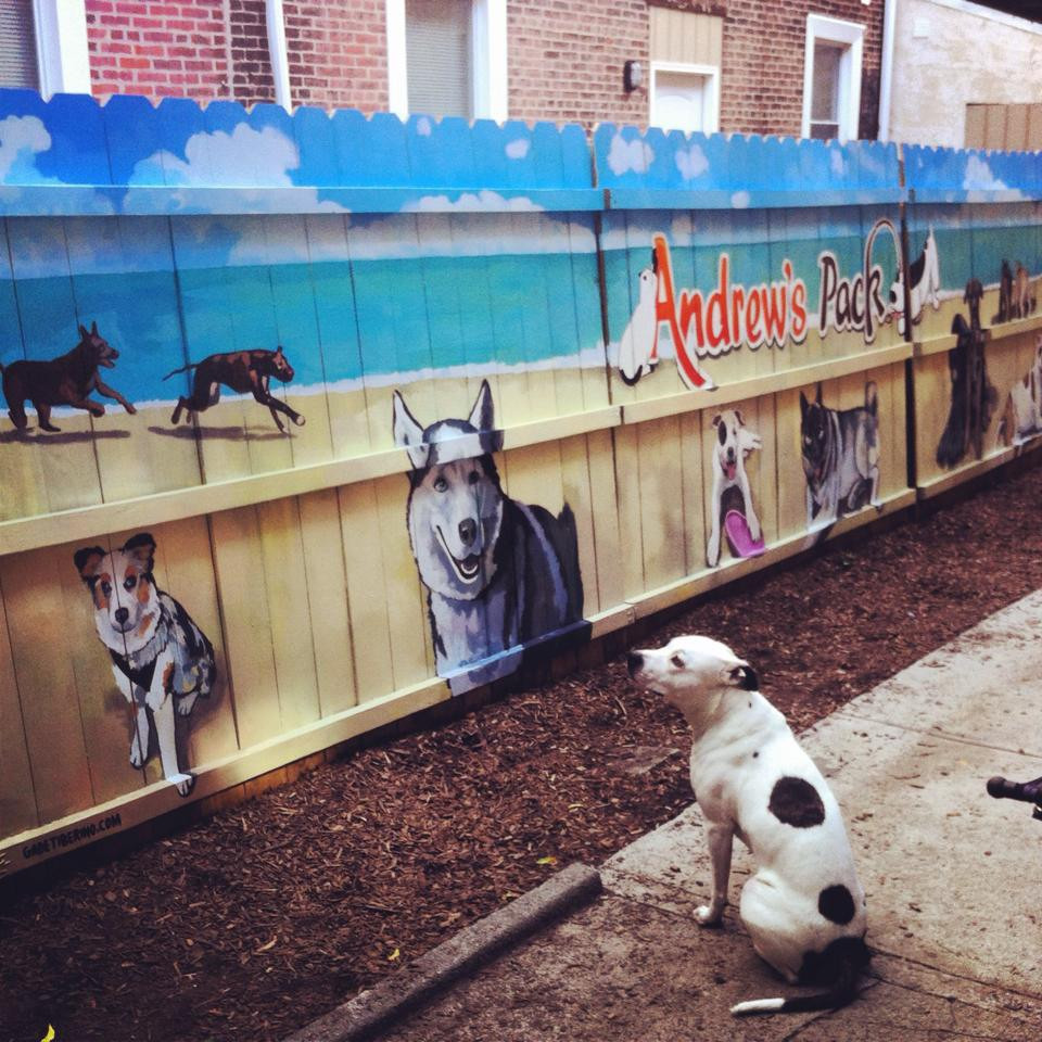 Mural Commission for Doggy Day Care