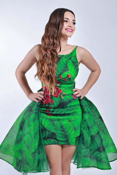 Arab Singer Zeina Aftimos