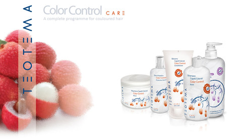 TEOTEMA hair products