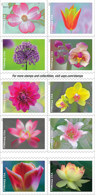 Garden Beauty 2021 stamp.PNG