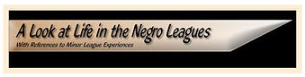 Life in the Negro Leagues.jpg