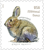 Brush Rabbit 2021 stamp.PNG