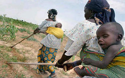 south africa women farmers