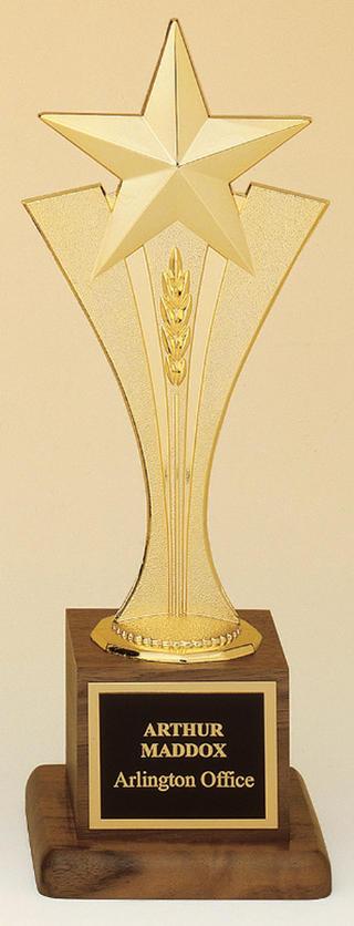 Airflyte Award 103.jpg