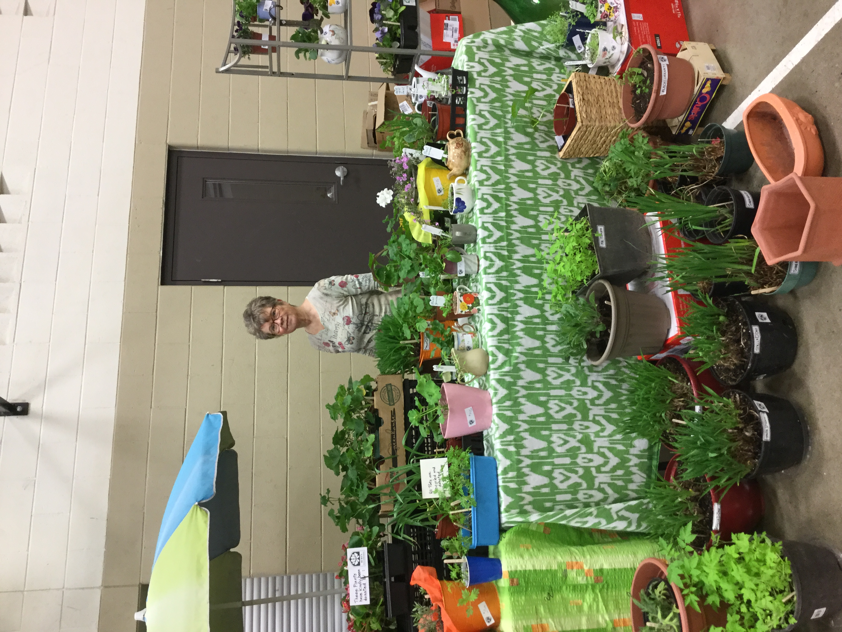 Plant table Spring Fair