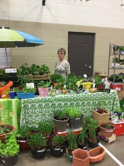 Plant table Spring Fair