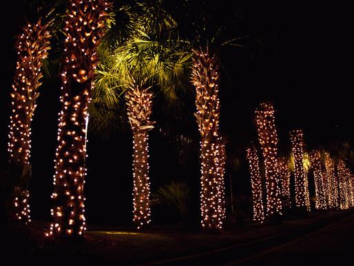 "I'm Dreaming of a ""Light"" Christmas..."