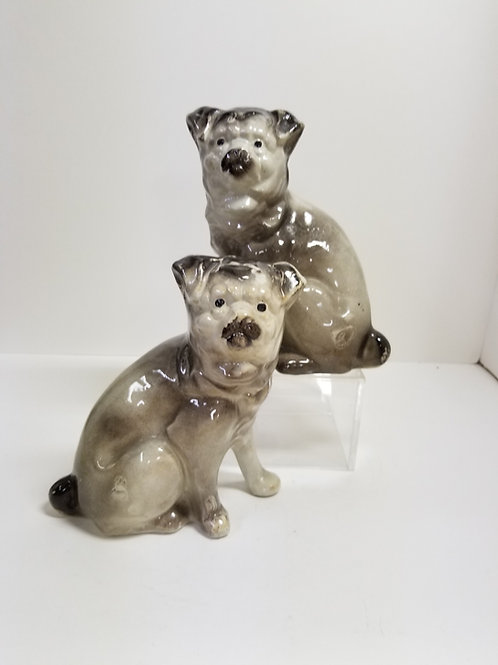 A Pair of Staffordshire Style Pugs 1930s