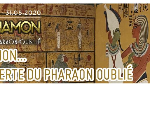 Toutankhamon… À la découverte du pharaon oublié