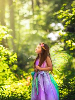 Apryl Hopkins Mentoring Fairy.jpg