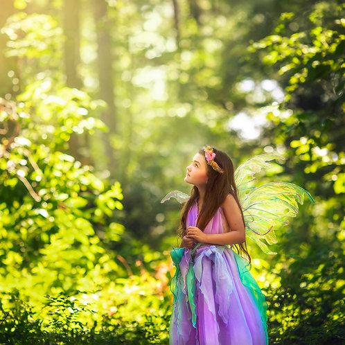 Ada Fairy Session