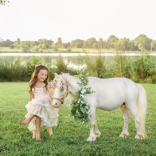 Unicorn Minis!