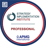 Strategy Implementation Professional