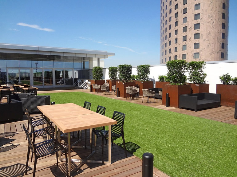 Renaissance Rooftop Bar landscape design by Tom Pritchett