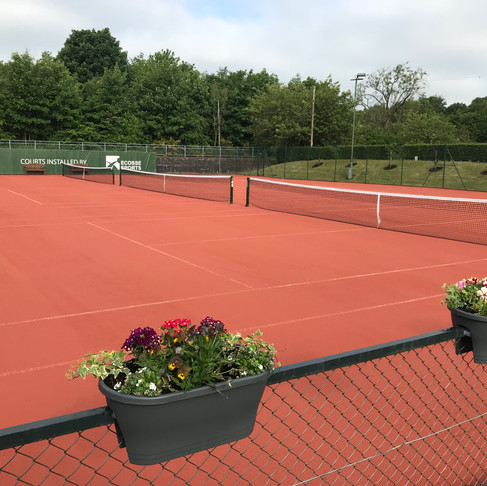 Press Release: New Artificial Courts