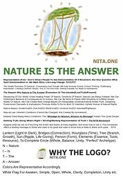 nitallinone1.PNG