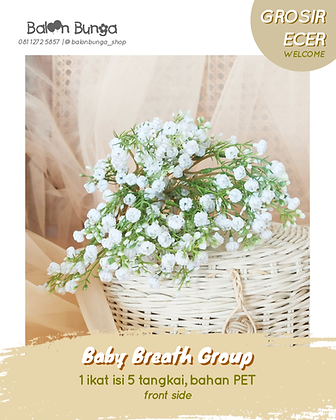 Baby Breath Group