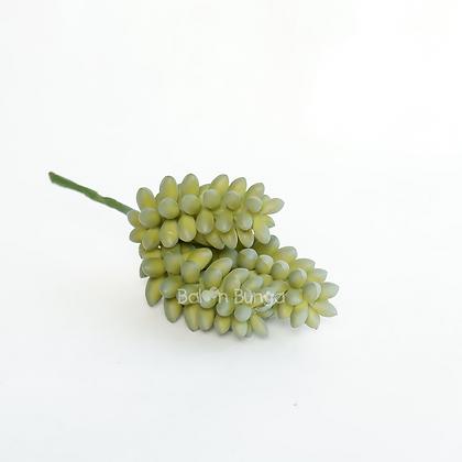 Succulent 15-2