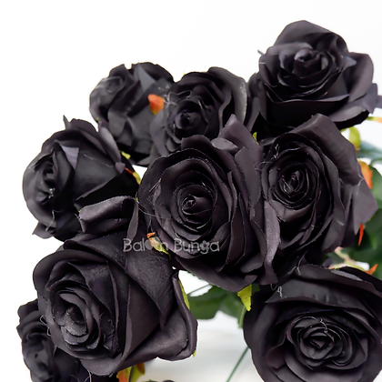 Rose Segi X10