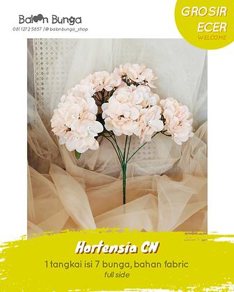 Hortensia CN